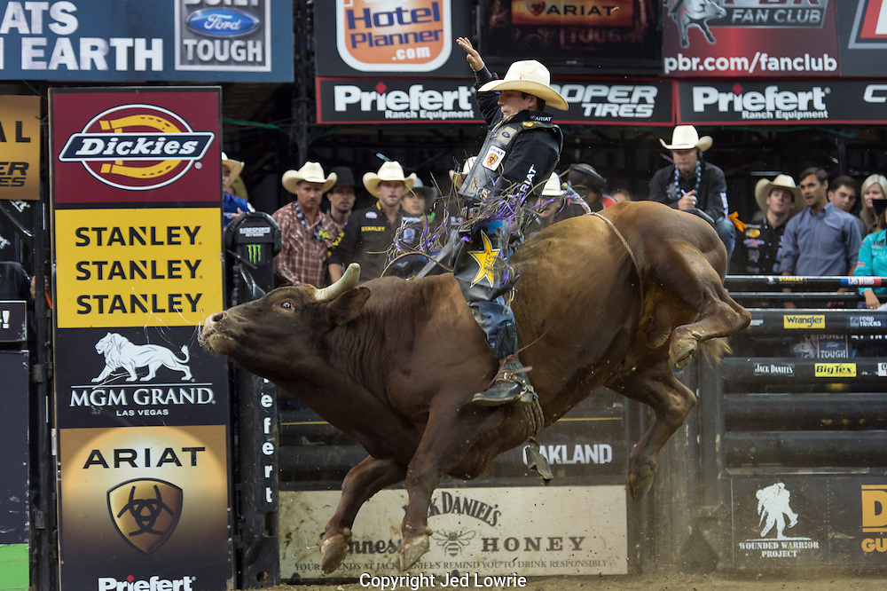 It is hard to imagine how high these bulls actually jump until you see it in person. The balance and strength displayed by the riders is beyond impressive.