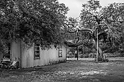 House with border fence in garden, near Brownsville, Texas