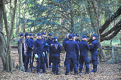 © Licensed to London News Pictures 22/10/2018. NEW ASH GREEN,UK.<br /> Kent police have extended the search area and increased the number of police officers searching for missing mother Sarah Wellgreen.<br /> Sarah has been missing 13 days and was last seen on the evening of October 9th. Police teams are also searching local woodland.<br /> Photo credit: Grant Falvey/LNP