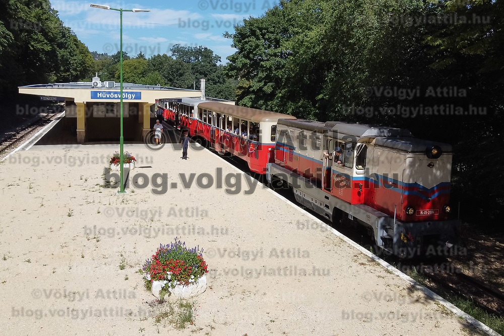 Train leaves a station at the Children's Railway in Budapest, Hungary on Aug. 26, 2020. ATTILA VOLGYI