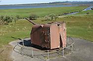 Fort Lewis Big Gun