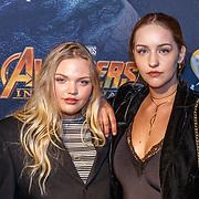 20180424 Première The Avengers: Infinity War