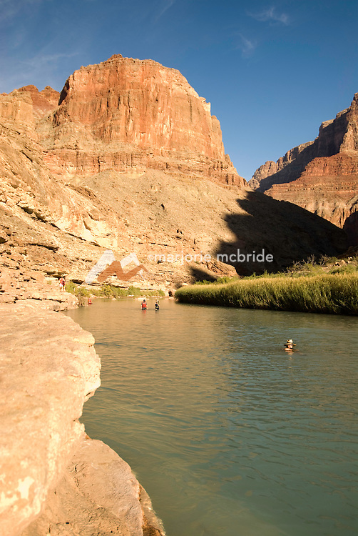 People enjoy swimming the blue waters of the Little Colorado River a tributary of the entering the Grand Canyon National Park, Arizona.
