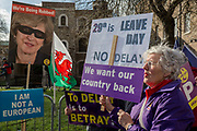 On the day that MPs in Parliament vote on a possible delay on Article 50 on EU Brexit negotiations by Prime Minister Theresa May, a lady UKIP Leaver protests on College Green, on 14th March 2019, in Westminster, London, England.