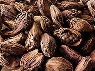 Whole black cardamoms spices - stock photos