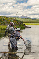A fly angler on the Henry's Fork River slowly brings a fish to a waiting net man.