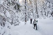 Snow Shoeing Lolo Pass, Montana.