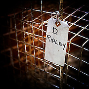Label tied on to a small wire mesh cage