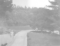 1925 Looking down driveway at 1847 Camino Palmero