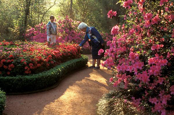 Stock photo of visitors to Bayou Bend enjoying the beautiful scenery.