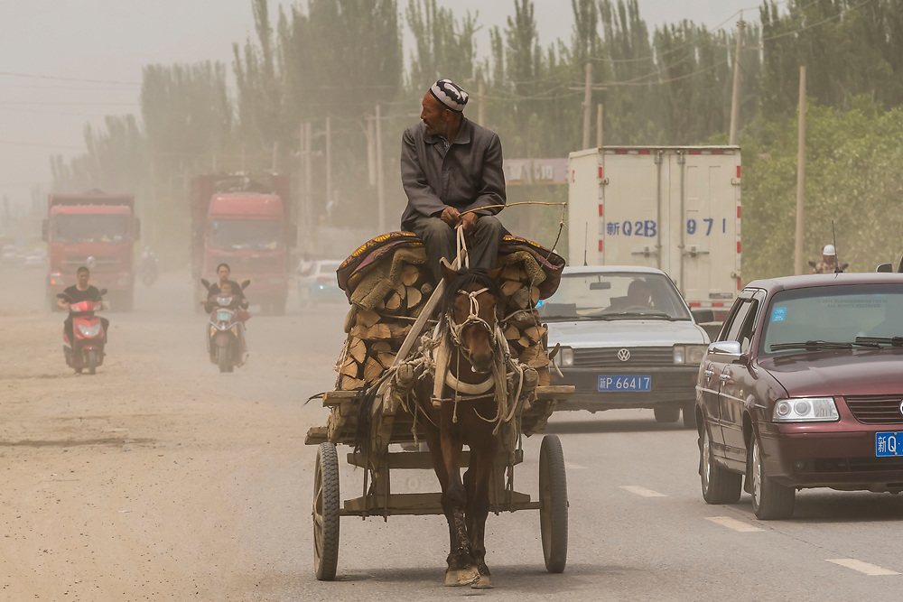 A man drives his donkey cart in Yarkand, on the Southern Silk Road (it was an important caravan town), at the southern edge of the Taklamakan Desert. Xinjiang Province, China.