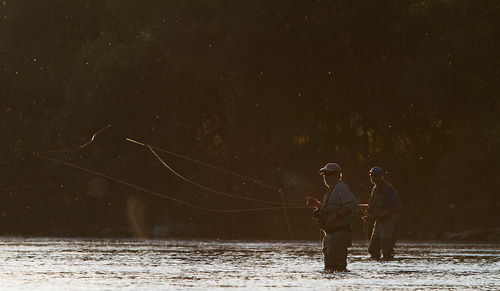 Elie Beerten (front) and Gerald Veeckmans, flyfishermen from Belgium, fishing for Grayling (Thymallus thymallus) and Brown trout (Salmo trutta f. fario) during a massive evening hatch of Blue-winged Olive mayflies (Fam. Ephemerellidae) in the San River, Myczkowce, Poland.