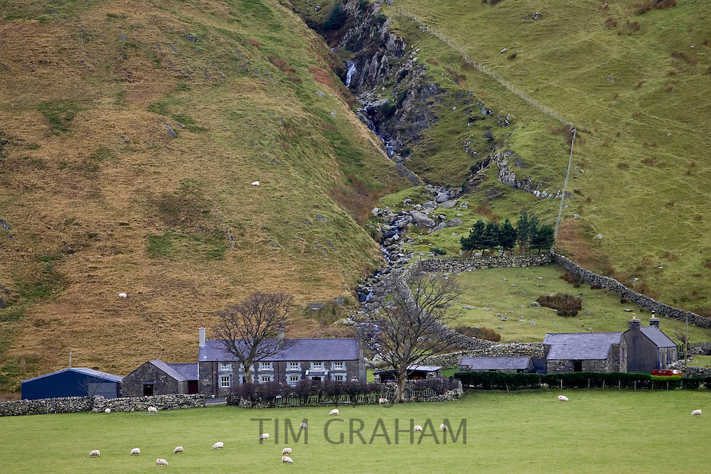 Two hill farms at the base of the Nant Ffrancon Valley in Snowdonia National Park, North Wales, United Kingdom