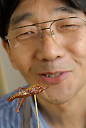 """Shoichi Uchiyama after eating the head of a locust.Tokyo resident Shoichi Uchiyama is the author of """"Fun Insect Cooking"""". His blog on the topic gets 400 hits a day. He believes insects could one day be the solution to food shortages, and that rearing bugs at home could dispel food safety worries."""