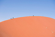 The red sand dunes at Namib-Naukluft National Park, Namibia.. The red colour is an indication of the age of this dune as it is caused by the oxidation of iron in the sand