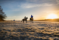 © Licensed to London News Pictures. 03/01/2017. Epsom, UK. Race horses are exercised on a frost covered Epsom Downs. Parts of the UK are experiencing temperatures as low as -5 degrees centigrade. Photo credit: Peter Macdiarmid/LNP