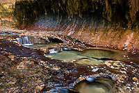 Emerald pools in the Subway canyon formation Left Fork of North Creek, Zion National Park Utah USA beautiful