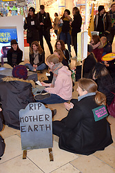 Extinction Rebellion Black Friday protest, Norwich 29 November 2019 UK. Activists walked past the shops and through the main shopping centres with a coffin in protest at mass consumerism which results in waste and pollution