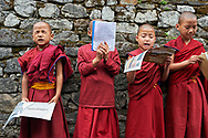 The four youngest nuns revising their lessons before going to the village's school - Karma Drubdey nunnery, Bhutan, 2016
