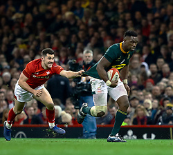 Siya Kolisi of South Africa held by Tomos Williams of Wales<br /> <br /> Photographer Simon King/Replay Images<br /> <br /> Under Armour Series - Wales v South Africa - Saturday 24th November 2018 - Principality Stadium - Cardiff<br /> <br /> World Copyright © Replay Images . All rights reserved. info@replayimages.co.uk - http://replayimages.co.uk