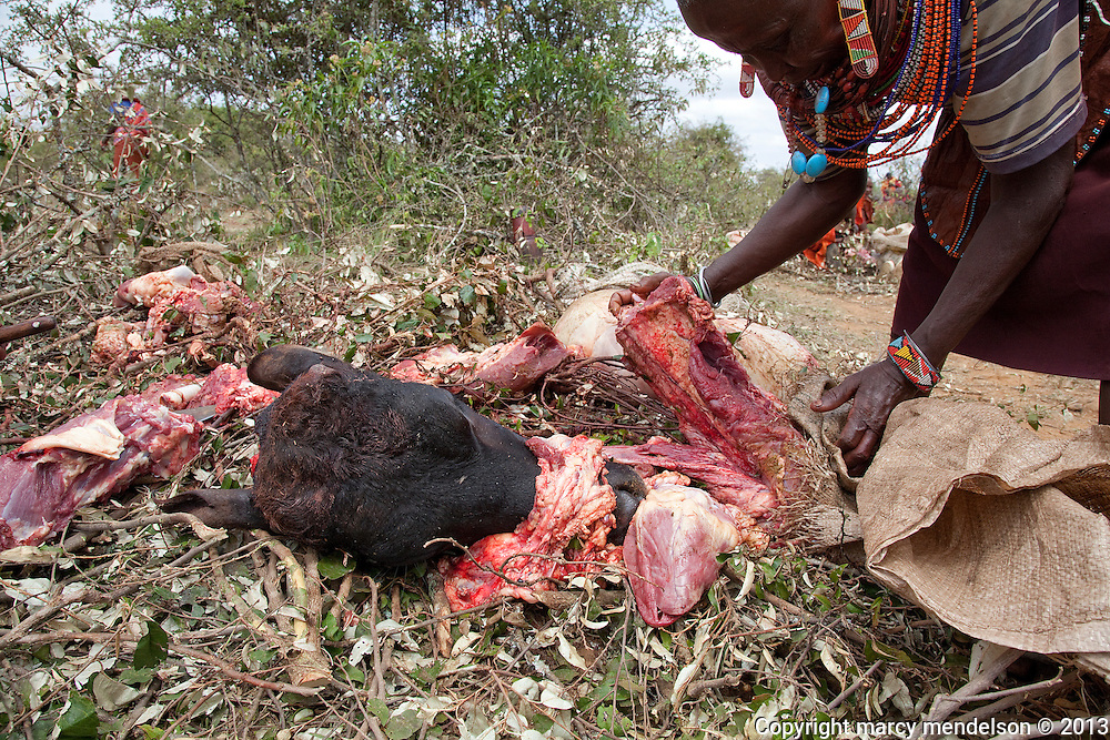Rendille, a Samburu grandmother, butchers meat in preparation for the great feast.  Every part of the cow is used, shared and no family goes hungry at the Lmuget, graduation ceremony of the moran.  Outside Kisima, Samburu County, Kenya.  August 22, 2013.