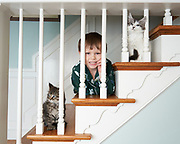 Kittens with a boy on stairs looking through the railing.