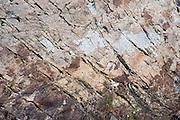 Imnaha River Trail, Hells Canyon National Recreation Area, Wallowa-Whitman National Forest, Imnaha, Oregon, USA