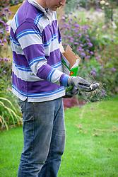Lawncare - feeding grass with granular lawn food