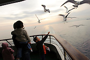 Feeding the seagulls on the ferry to Sado island, Niigata, Japan, April 4, 2009..Sado island, off the north coast of Japan's main island, is famous as the home of the Kodo drummers and the annual Earth Celebration arts festival.