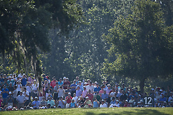 May 11, 2018 - Ponte Vedra Beach, FL, USA - The Players Championship 2018 at TPC Sawgrass..Gallery on 12 fairway following Phil Mickelson, Tiger Woods and Rickie Fowler. (Credit Image: © Bill Frakes via ZUMA Wire)