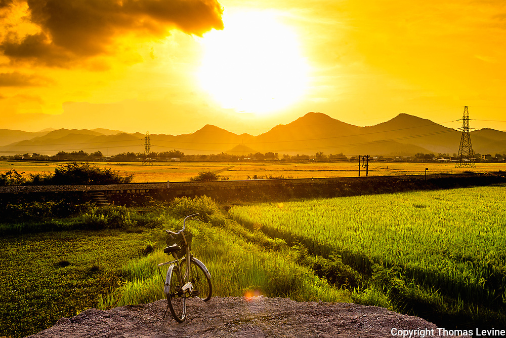 Sunset at Phước Lộc rice fields and yellow sky.