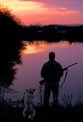 Stock photo of a man with a shotgun standing on the shore of a pond with his dog at sunset