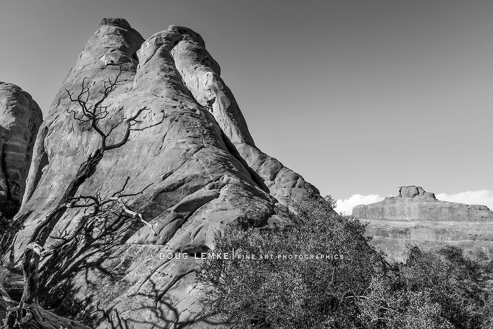 One of the many and varied rock forms at Arches National Park, Utah, USA