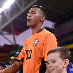BRISBANE, AUSTRALIA - JANUARY 31: Dane Ingham of the Roar walks out during the second qualifying round of the Asian Champions League match between the Brisbane Roar and Global FC at Suncorp Stadium on January 31, 2017 in Brisbane, Australia. (Photo by Patrick Kearney/Brisbane Roar)