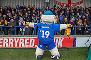 Haydon the Womble in front of the AFC Wimbledon fans during the The FA Cup 5th round match between AFC Wimbledon and Millwall at the Cherry Red Records Stadium, Kingston, England on 16 February 2019.