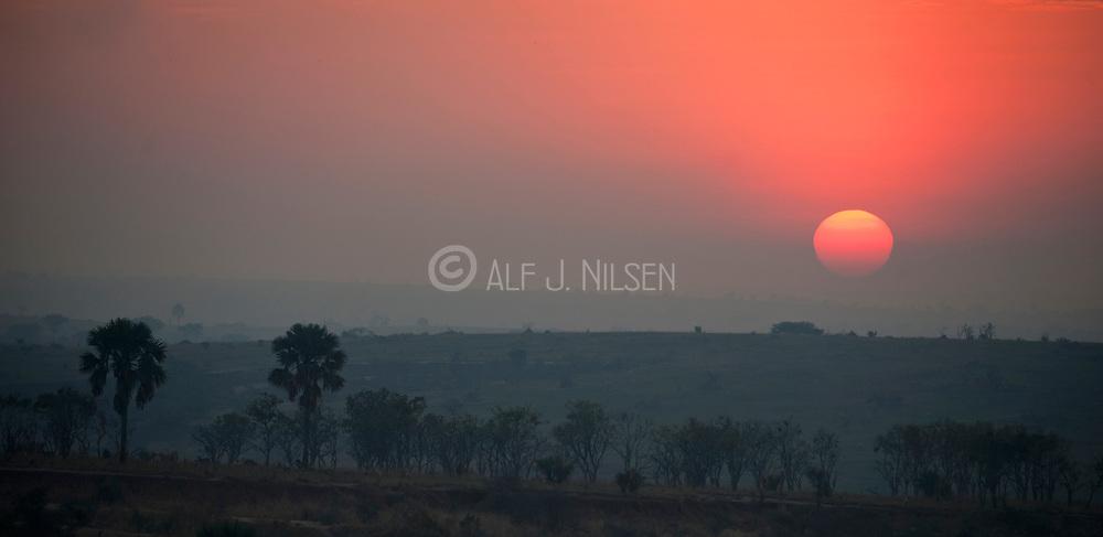 Surize in Murchison Falls NP, Uganda.
