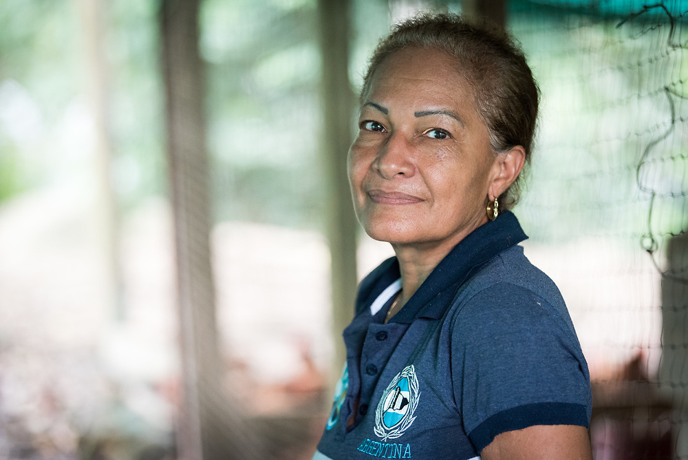 16 November 2018, San José de León, Mutatá, Antioquia, Colombia: Woman leader Aida, who was part of the first group of ex-combatant families to settle in San José de León, tends to the community's poultry, caring for the chickens and hens, and collecting the eggs they provide. Following the 2016 peace treaty between FARC and the Colombian government, a group of ex-combatant families have purchased and now cultivate 36 hectares of land in the territory of San José de León, municipality of Mutatá in Antioquia, Colombia. A group of 27 families first purchased the lot of land in San José de León, moving in from nearby Córdoba to settle alongside the 50-or-so families of farmers already living in the area. Today, 50 ex-combatant families live in the emerging community, which hosts a small restaurant, various committees for community organization and development, and which cultivates the land through agriculture, poultry and fish farming. Though the community has come a long way, many challenges remain on the way towards peace and reconciliation. The two-year-old community, which does not yet have a name of its own, is located in the territory of San José de León in Urabá, northwest Colombia, a strategically important corridor for trade into Central America, with resulting drug trafficking and arms trade still keeping armed groups active in the area. Many ex-combatants face trauma and insecurity, and a lack of fulfilment by the Colombian government in transition of land ownership to FARC members makes the situation delicate. Through the project De la Guerra a la Paz ('From War to Peace'), the Evangelical Lutheran Church of Colombia accompanies three communities in the Antioquia region, offering support both to ex-combatants and to the communities they now live alongside, as they reintegrate into society. Supporting a total of more than 300 families, the project seeks to alleviate the risk of re-victimization, or relapse into violent conflict.