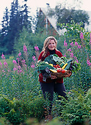 Amanda Brannon carrying full basket of Matanuska Valley produce grown at Alaska Fireweed Honey Farm and photographed at Winterlake Lodge, Alaska.