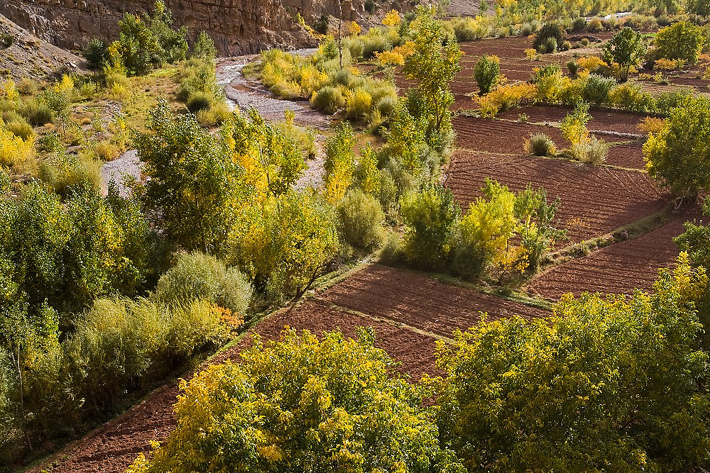 Small cultivated fields along a river outside the Berber village of Ichbbakene, M'Goun Massif, Central High Atlas, Morocco.