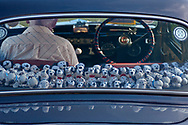 SERIES - UNRLIABLE-SIGHTINGS by PAUL WILLIAMS- Dalmation puppies in vintage car Aldeburgh