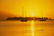 Sunset behind motu, Moorea, French Polynesia