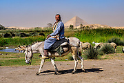 Shepherd tending his flock of sheep at Dahshur lake with the Bent Pyramid in the background