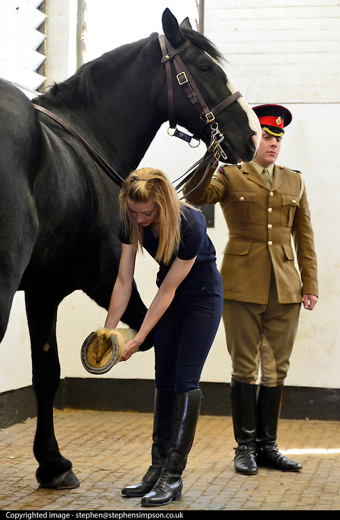 © Licensed to London News Pictures. 02/05/2013. London, UK The Household Cavalry receive a horse health check at Hyde Park Barracks from pet charity Blue Cross in order to encourage horse owners to take part in the National Equine Health Survey (NEHS). Photo credit : Stephen Simpson/LNP