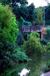 Stock photo of an old bridge over the bayou in Buffalo Bayou Park in Houston Texas