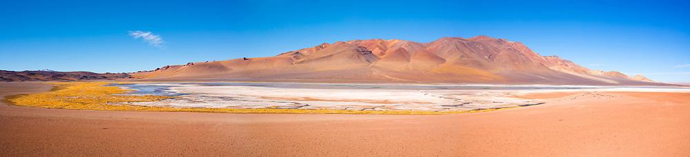 Salar de Aguas Calientes (Aguas Calientes Salt Lake) in the Altiplano (high Andean plateau) at an altitude of 4200m, Atacama desert, Chile, South America