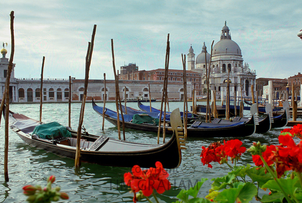 Cathedral of Santa Maria Della Salute seen from across the Grand Canal, Venice, Italy