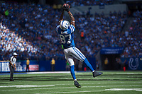 September 28, 2014: Indianapolis Colts wide receiver Reggie Wayne (87) catches a pass by the sidelines during a football game between the Indianapolis Colts and Tennessee Titans at Lucas Oil Stadium in Indianapolis, IN. NFL American Football Herren USA SEP 28 Titans at Colts PUBLICATIONxINxGERxSUIxAUTxHUNxRUSxSWExNORxONLY Icon1409280244<br />