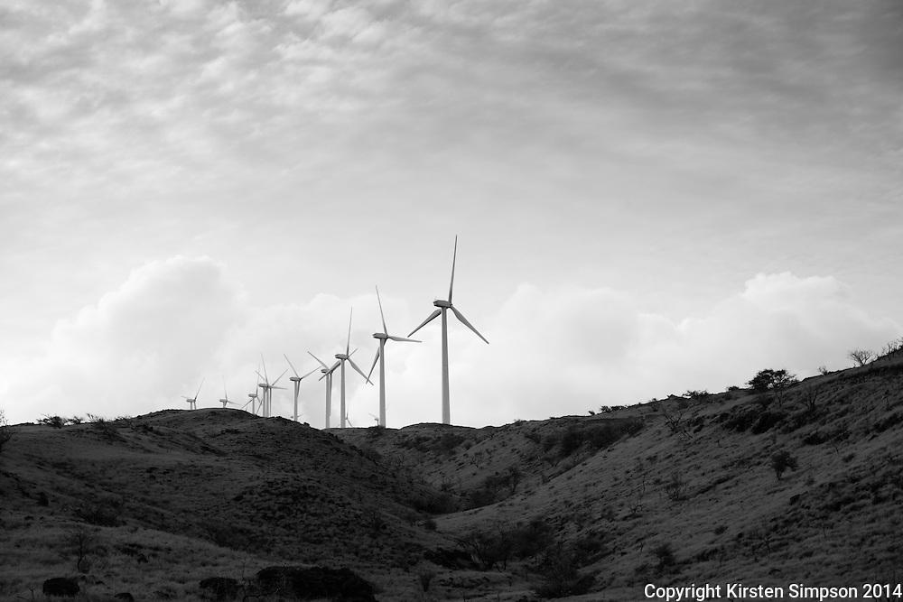Windfarm in Pāpalaua State Wayside Park