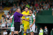 Jamie McAllister (right) and keeper Wayne Hennessy of Yeovil Town are not happy about the the ref James Linington's  decision to give Reading a penalty  during the Skybet championship match, Yeovil Town v Reading at Huish Park in Yeovil on Saturday 31st August 2013. <br /> Picture by Sophie Elbourn, Andrew Orchard sports photography,