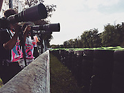 Monza italy, f1 photography